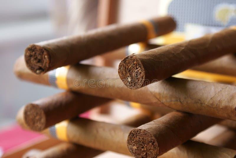 古巴的雪茄 免版税库存照片
