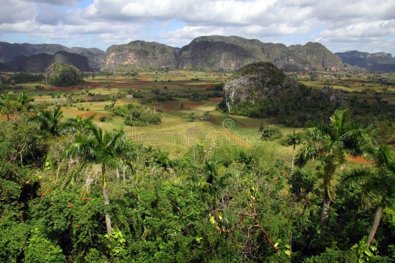 古巴谷vinales 免版税库存图片