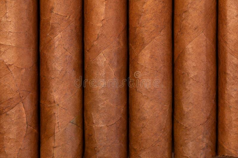 古巴雪茄纹理  库存照片
