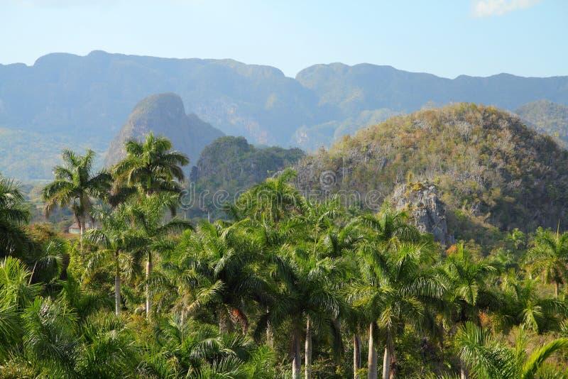 古巴- Vinales国家公园 库存照片