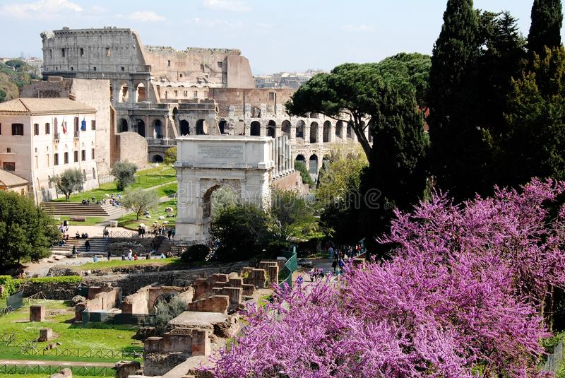 古罗马广场(罗马广场)和罗马斗兽场,罗马,意大利 免版税库存照片
