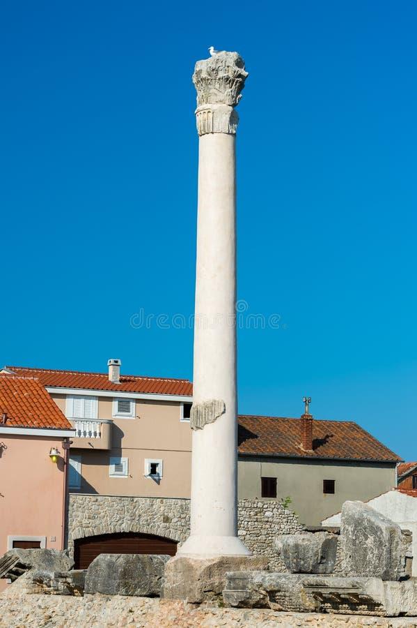 古老专栏在扎达尔,克罗地亚老镇  图库摄影