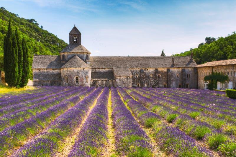 古老修道院Abbey Notre Dame de Senanque在横谷,法国 库存图片