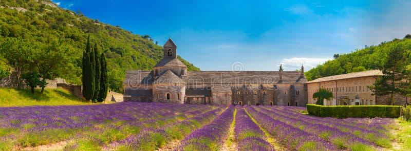 古老修道院Abbey Notre Dame de Senanque在横谷,法国 免版税库存照片