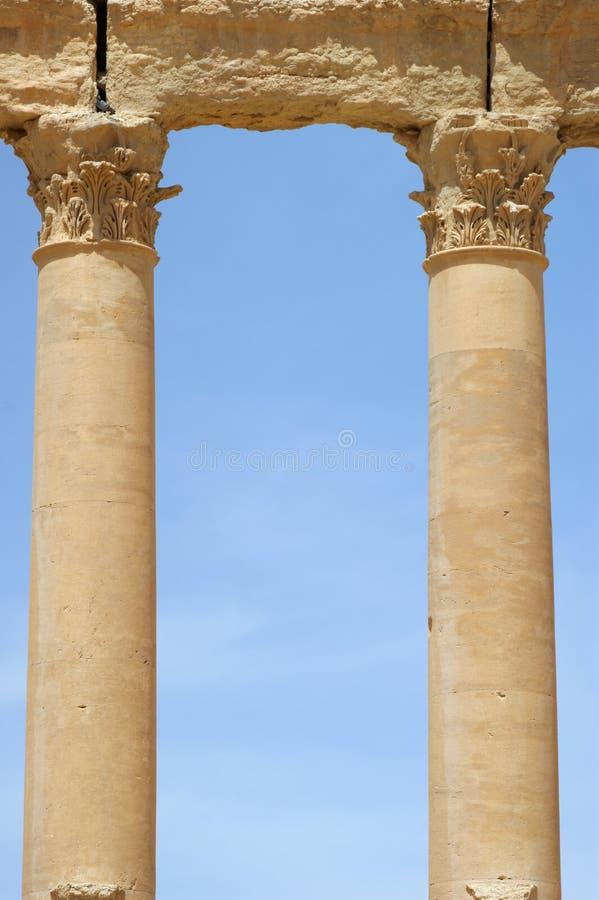 古老列扇叶树头榈破坏叙利亚 免版税库存图片