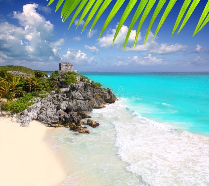古老加勒比玛雅废墟tulum绿松石 免版税库存图片
