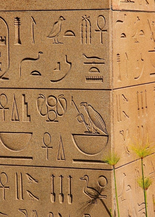 古老埃及象形文字 图库摄影