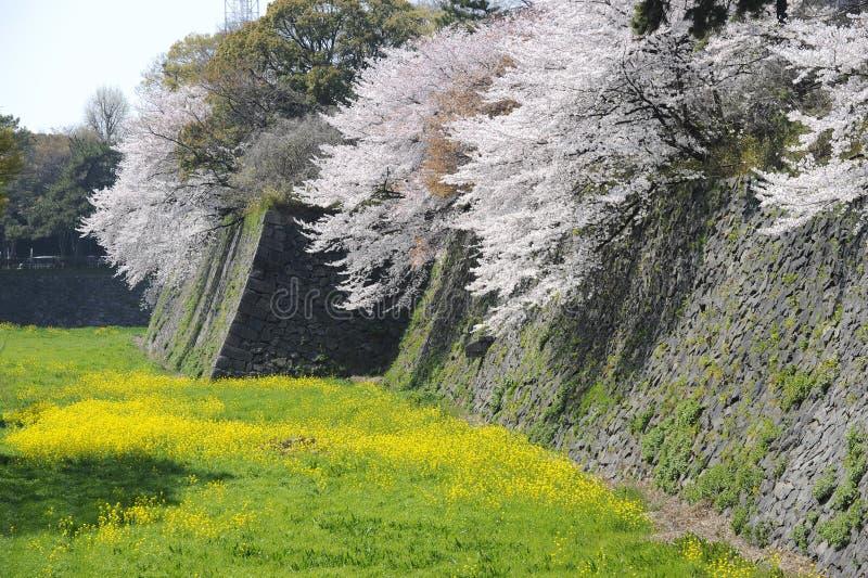 古老城堡干燥护城河 库存照片