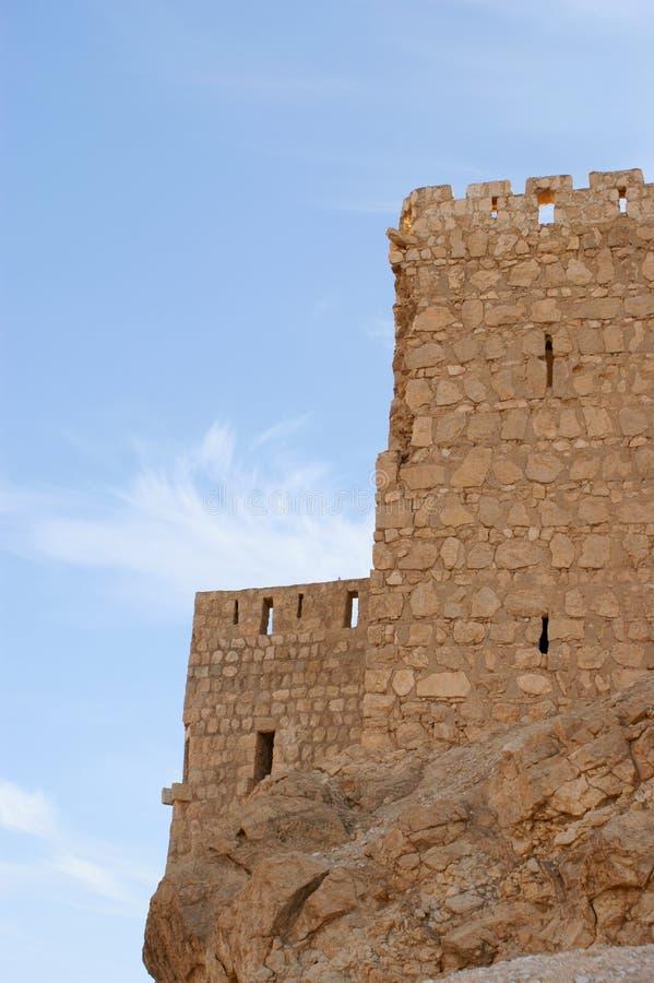 古老城堡扇叶树头榈叙利亚 免版税库存照片