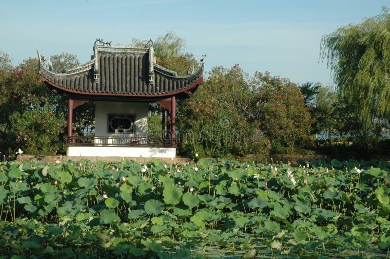 古老域俯视的亭子waterlilies 免版税库存照片