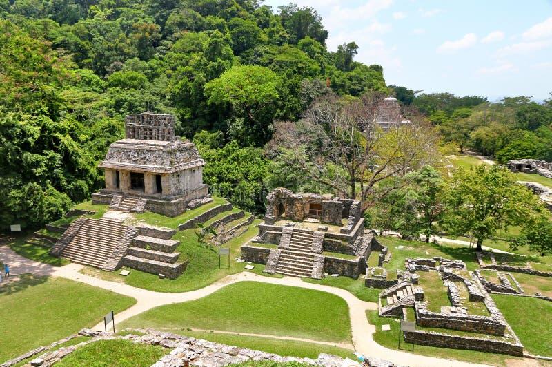 古老废墟在帕伦克,墨西哥 库存照片