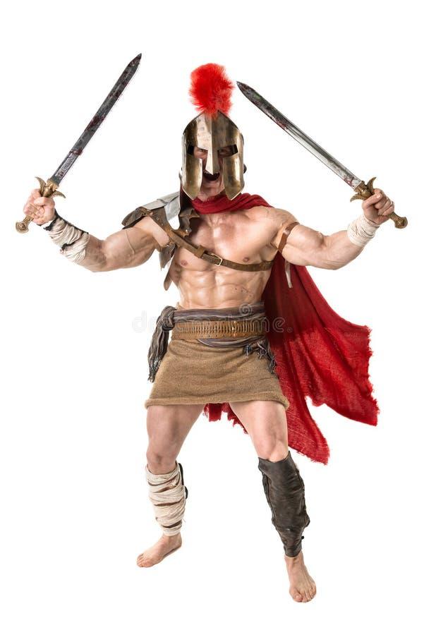古老战士或争论者 免版税库存图片