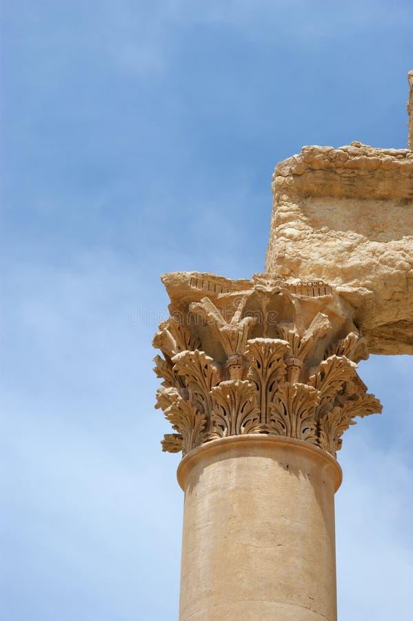 古老接近的列扇叶树头榈破坏叙利亚  免版税库存图片