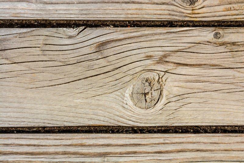 古老木墙壁的纹理,与很多镇压和剥纤维,特写镜头摘要背景的老干木头 图库摄影