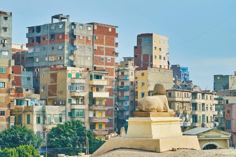 古老狮身人面象观看现代亚历山大,埃及 库存照片