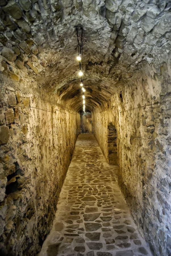 古老石隧道 库存照片