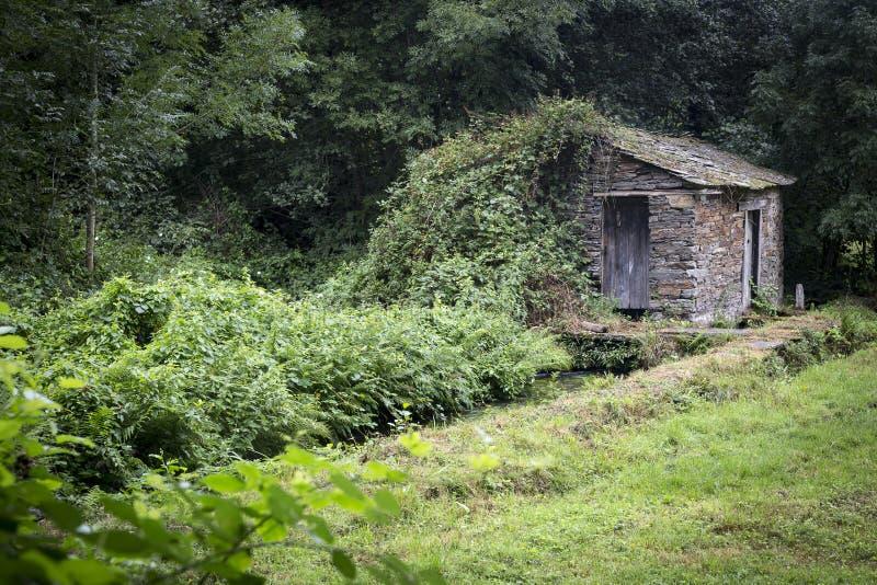 古老石头在森林做了房子和水小河 库存图片