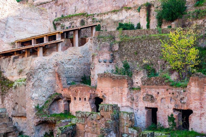 古老罗马废墟和遗骸著名宫殿和大厦在帕拉蒂尼山在罗马,意大利 库存图片