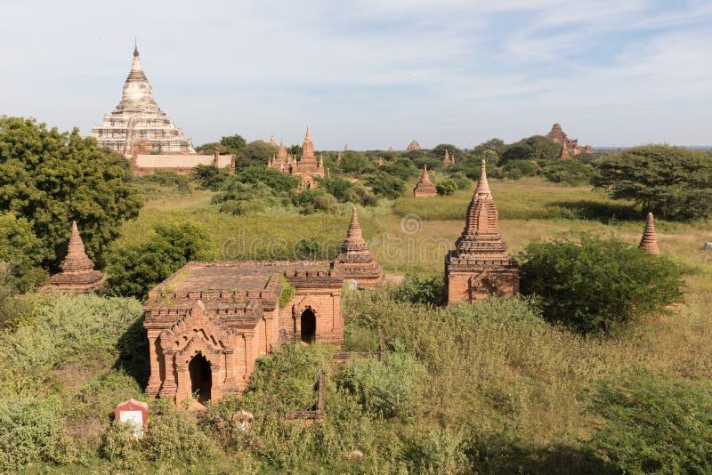 古老菩萨寺庙在蒲甘,缅甸(缅甸 免版税图库摄影