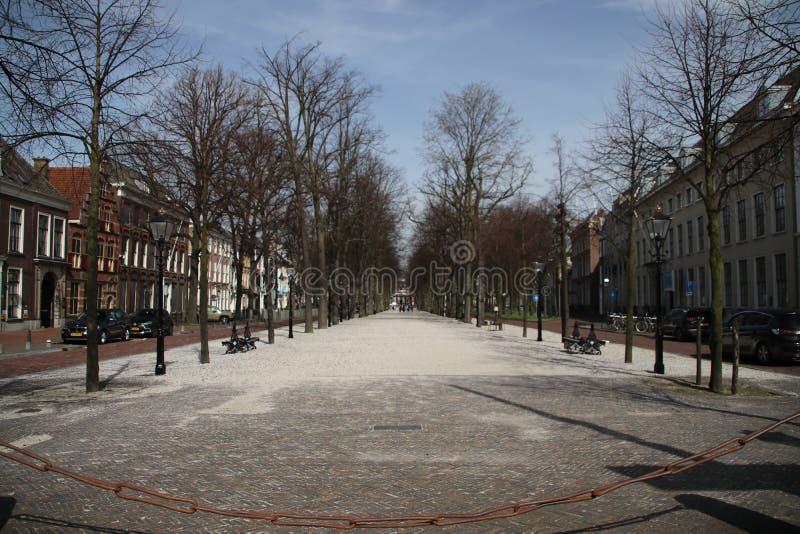 古老街道在小室Haag城市在荷兰命名了lange voorhout 免版税图库摄影