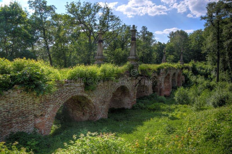 古老被破坏的长满的红砖桥梁在森林里 库存图片