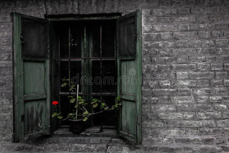 古老视窗 库存图片