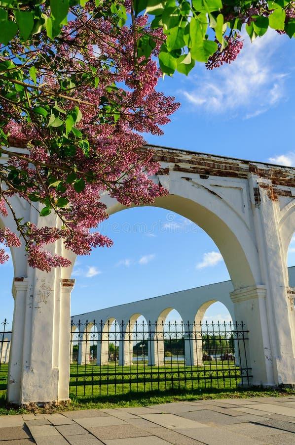古老贸易的拱廊在Veliky诺夫哥罗德,俄罗斯 图库摄影