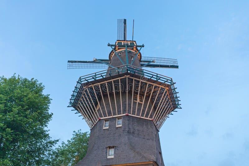 古耶风车阿姆斯特丹 库存照片