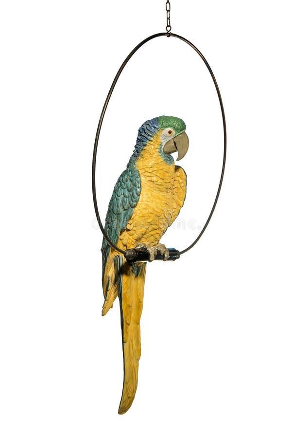 古色古香的与实物大小一样的瓦器鹦鹉金刚鹦鹉 免版税库存照片