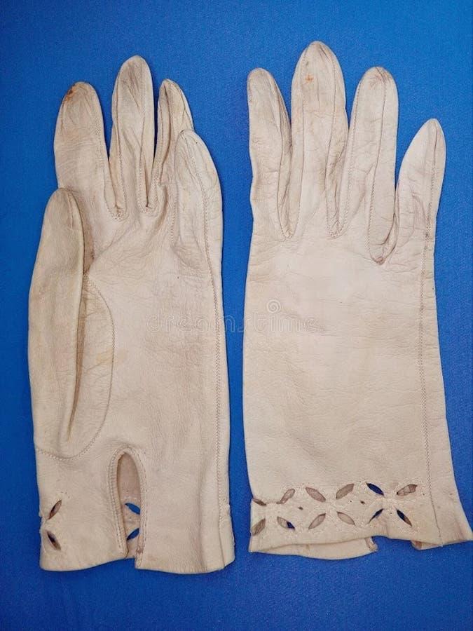 古色古香的样式皮手套,夫人的手套,妇女的手套,从20世纪40年代的真实的葡萄酒羊羔皮手套 库存照片