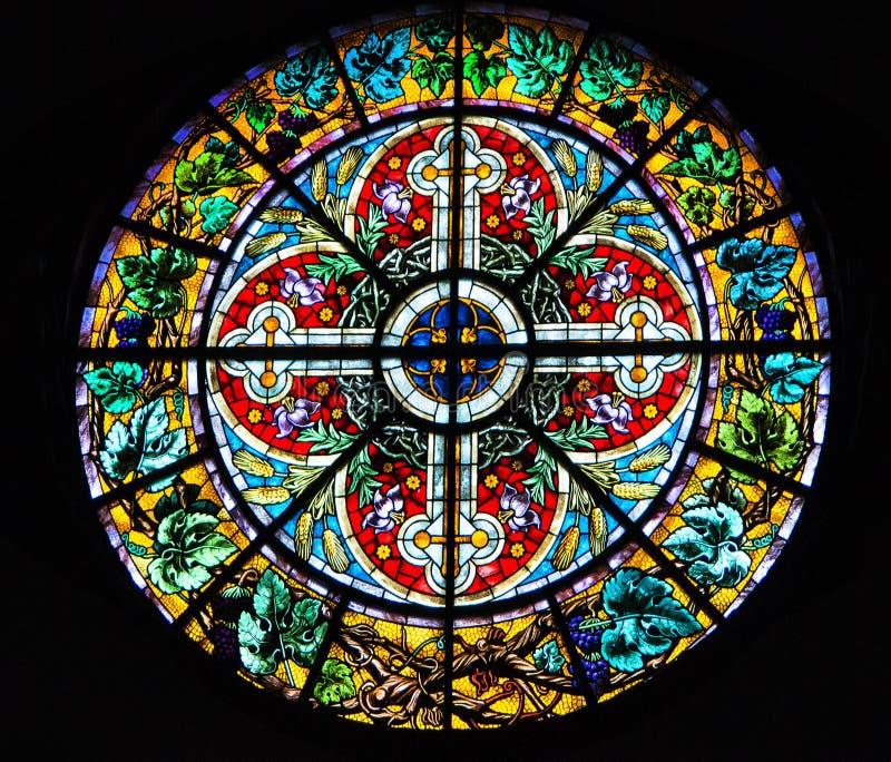 古色古香的玫瑰华饰在里加圆顶大教堂里污迹玻璃窗在里加,拉脱维亚 图库摄影