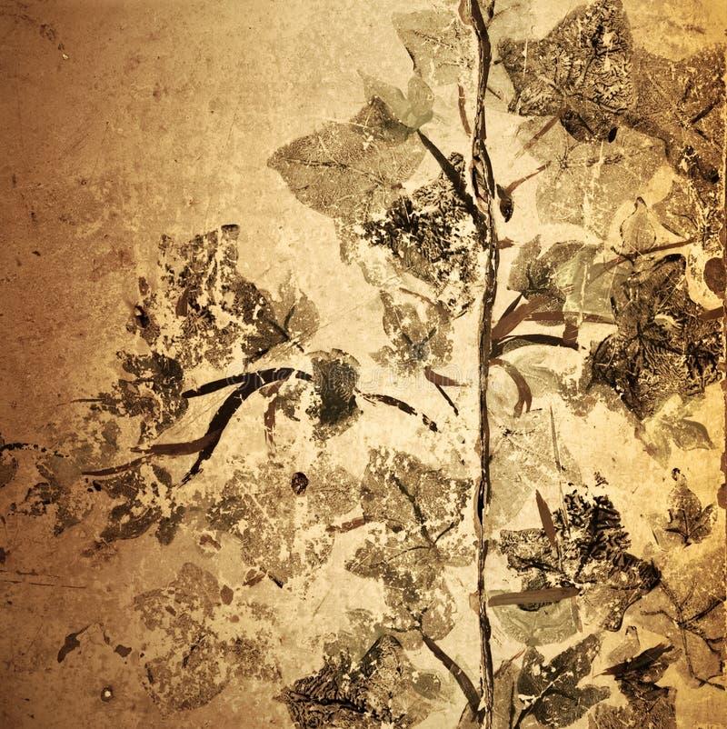 古色古香的背景花卉grunge 库存照片