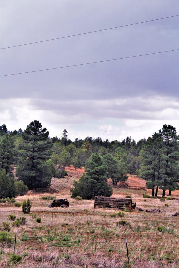 古董车和部份原木小屋在菩提树,纳瓦霍县,亚利桑那,美国 免版税库存图片
