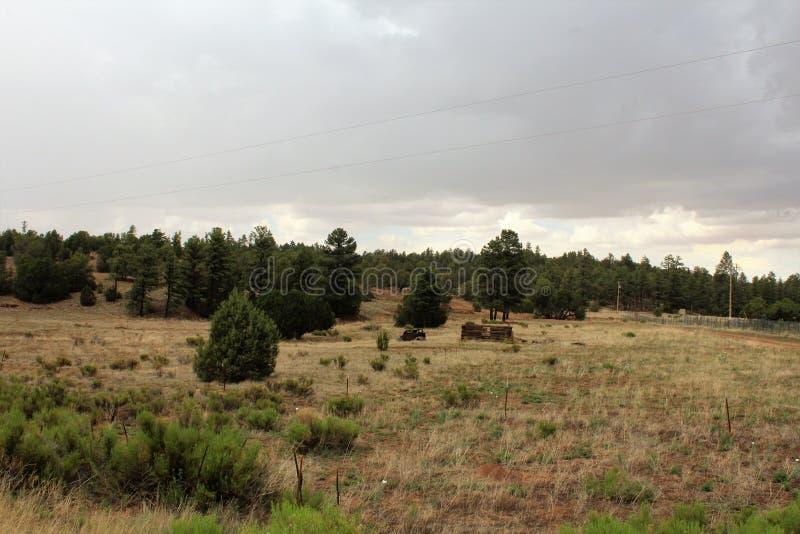 古董车和部份原木小屋在菩提树,纳瓦霍县,亚利桑那,美国 图库摄影