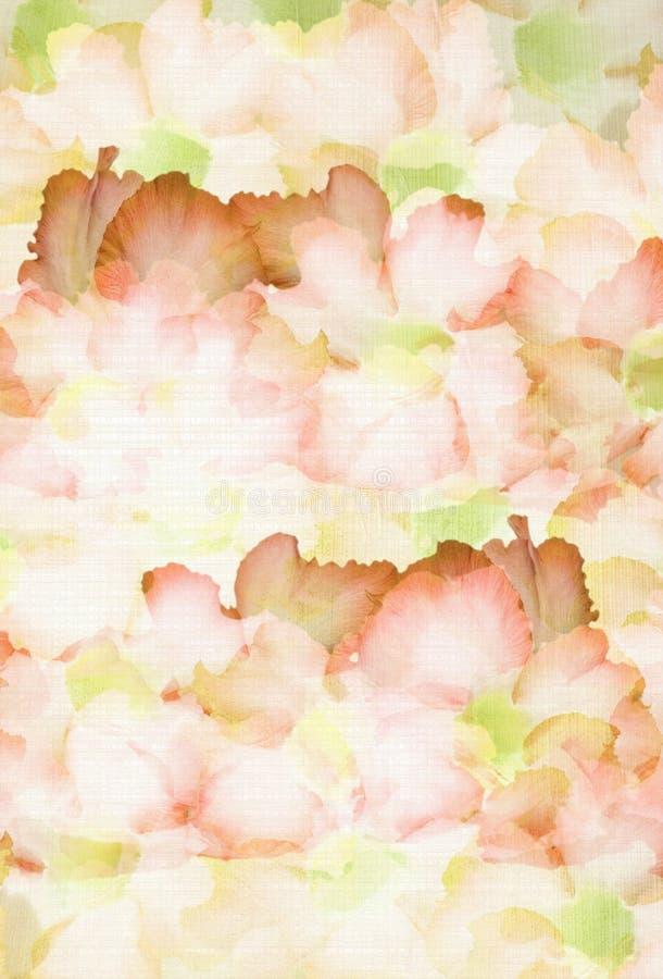 古铜色多云floweron橄榄 图库摄影