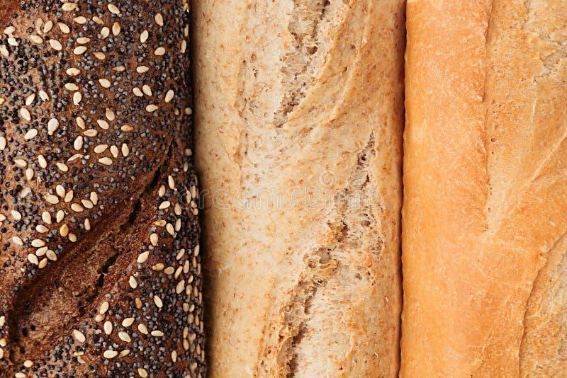 另外品种视图面包从上面 拉伊、麦子和整个五谷面包 宏指令 纹理 库存照片