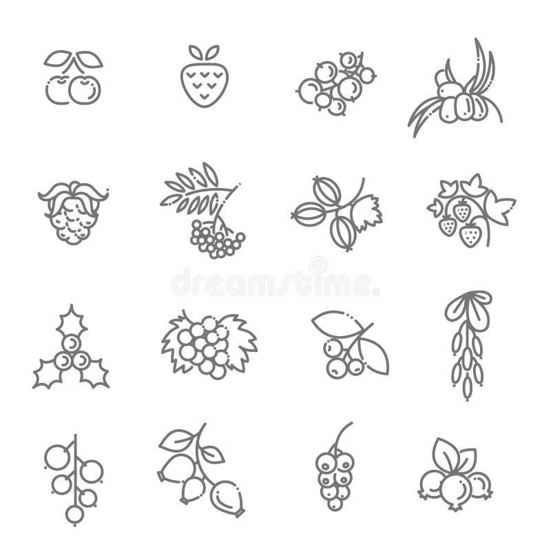 另外的背景是多种向量白色将的浆果图标查出的集合排序 库存例证