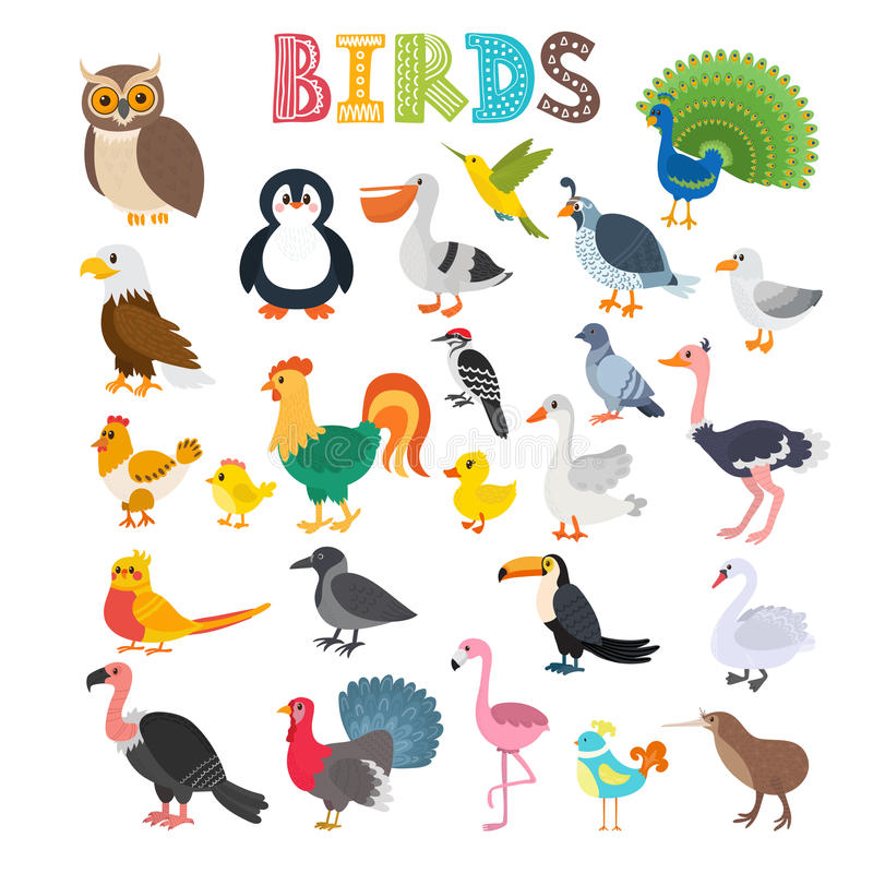 另外种类的传染媒介例证鸟 逗人喜爱的动画片bir 向量例证