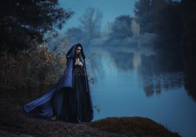 召唤的巫婆 库存图片
