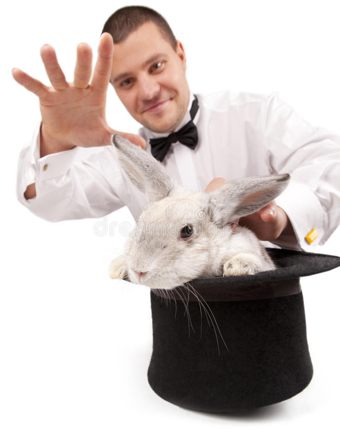 召唤的魔术师兔子