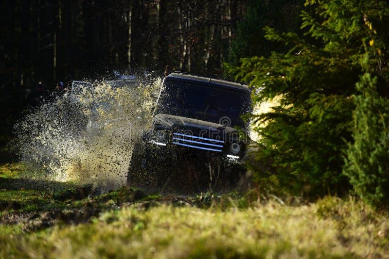召集,竞争和四轮驱动的概念 开汽车赛跑在秋天森林越野车或SUV横穿 库存图片