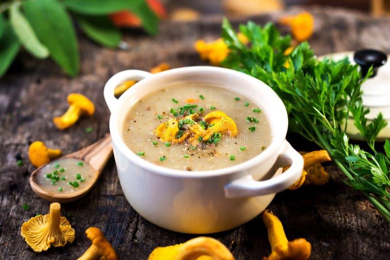 可口乳脂状的蘑菇汤 免版税库存照片