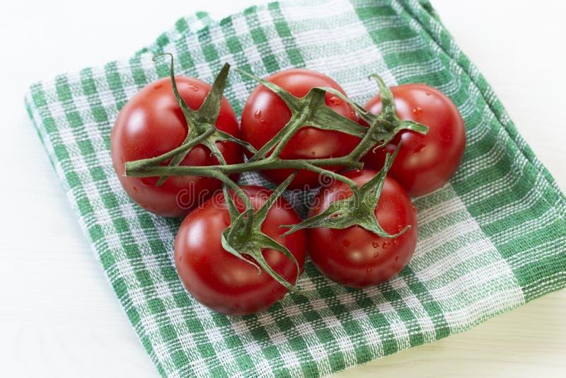 可口成熟红色蕃茄分支在一块绿色方格的餐巾的 与叶子的美丽的圆的中等蕃茄在分支 免版税库存照片