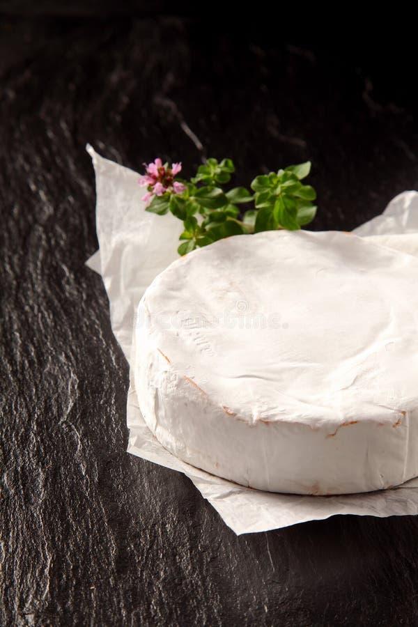 可口成熟软制乳酪乳酪整个回合  库存图片