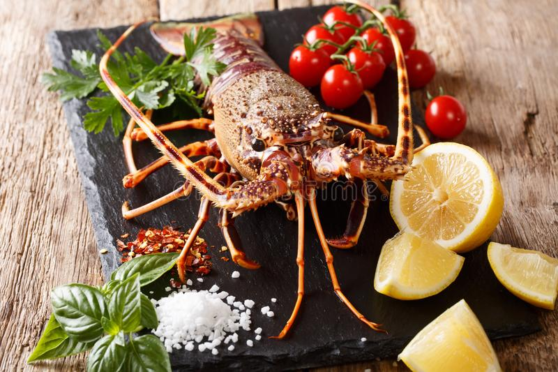 可口未加工的食物:大螯虾用蕃茄、柠檬和草本, s 免版税库存图片