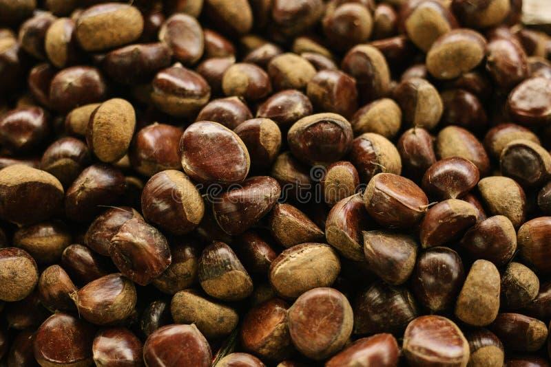 可口欧洲栗木背景 蛋白质的一种卫生食品富有 库存照片