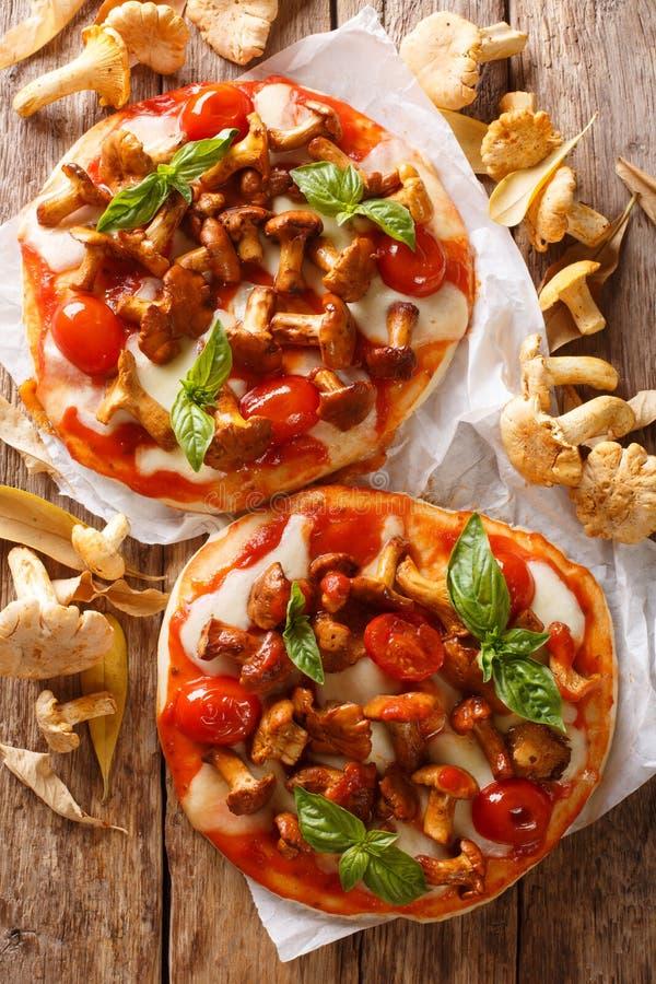 可口比萨用黄蘑菇蘑菇、无盐干酪乳酪、蕃茄和蓬蒿特写镜头在羊皮纸 r 免版税库存图片