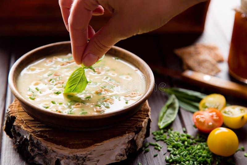 可口汤和蕃茄 免版税库存照片