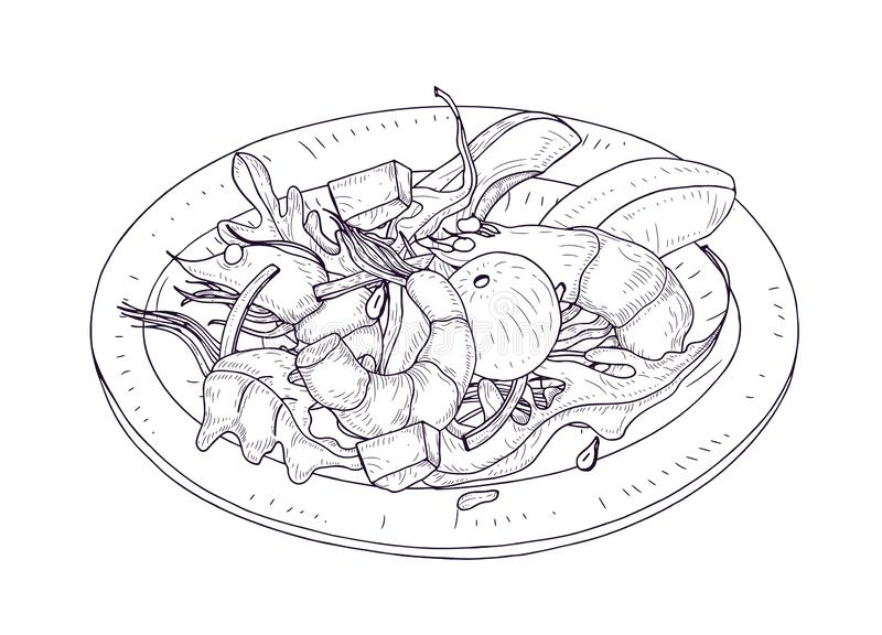 可口沙拉用海鲜和菜在板材手拉与等高线在白色背景 健康的膳食 库存例证