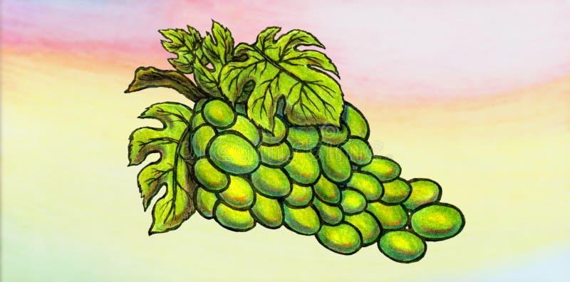 可口绿色葡萄树和荧光的背景 免版税库存照片